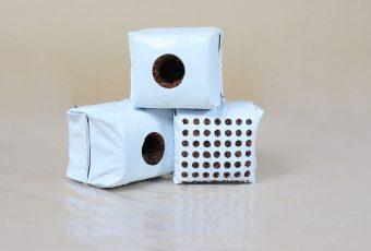 propagation-cubes