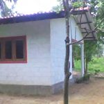 2009_4