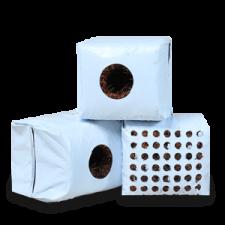 propagation-cubes-